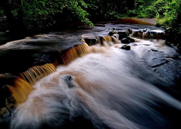 River Rivelin (01) - Yorkshire
