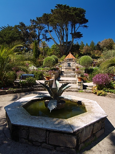 The Abbey Garden, Tresco #3 - Isles of Scilly