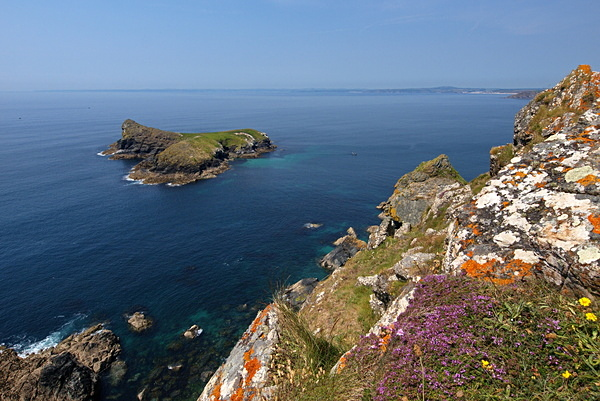 Mullion Island - Cornwall