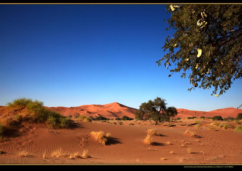 100321-Namibia-9904-Dunes - Beyond the UK - Namibia