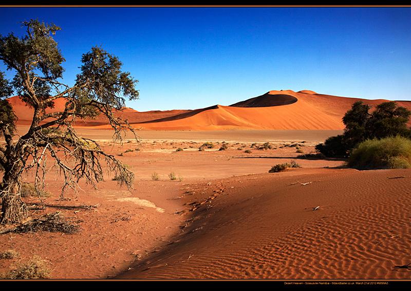 100321-Namibia-9899-DesertHeaven - Beyond the UK - Namibia
