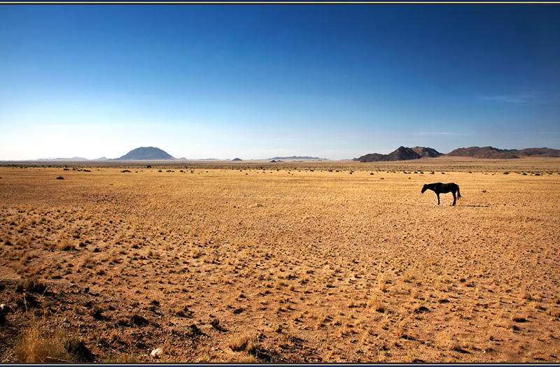 To Die Alone - Beyond the UK - Namibia