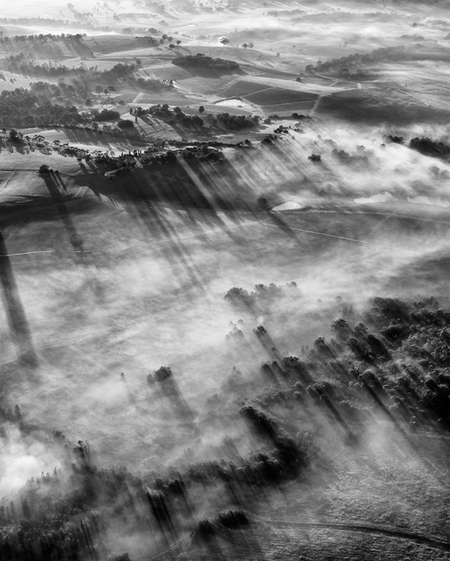 Hunter Valley dawn - Black and White
