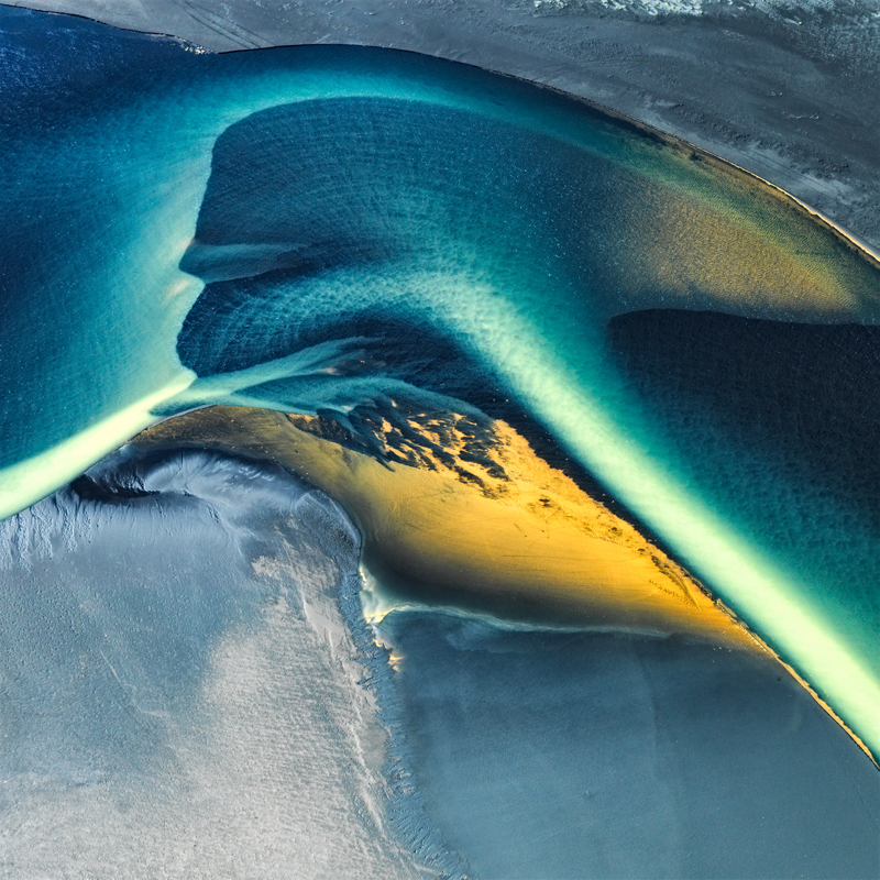 Bird of Paradise - Iceland River Deltas