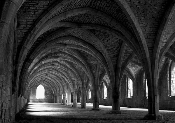 The cellarium - Black and White
