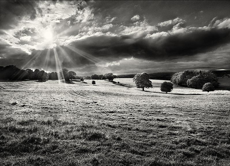 Yorkshire photographer martin henson