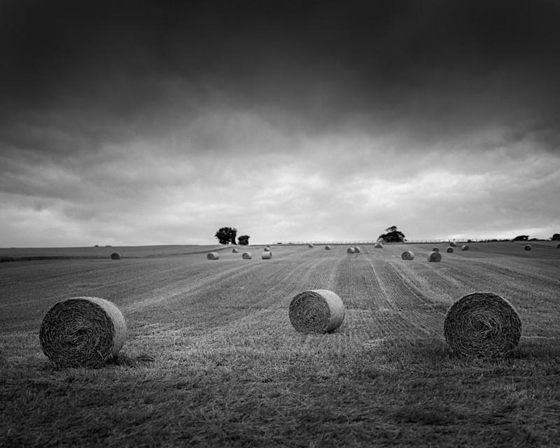3 Rolls - Landscapes