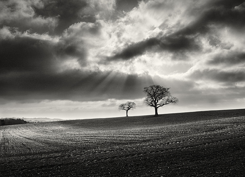 Two Tees in Black and White at Farnley Yorkshire