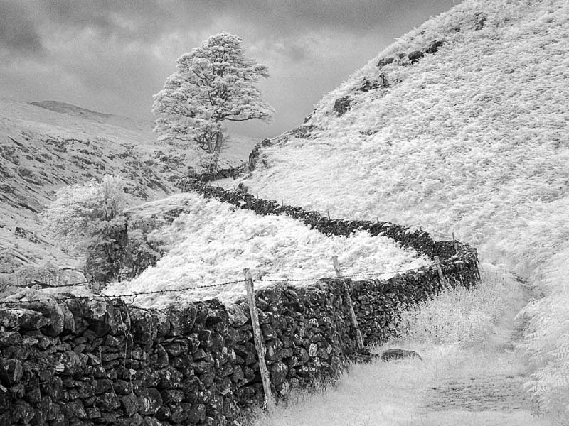 Lake District Path - Infrared