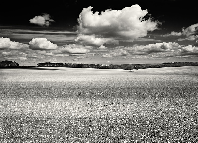 Ploughed field in Yorkshire