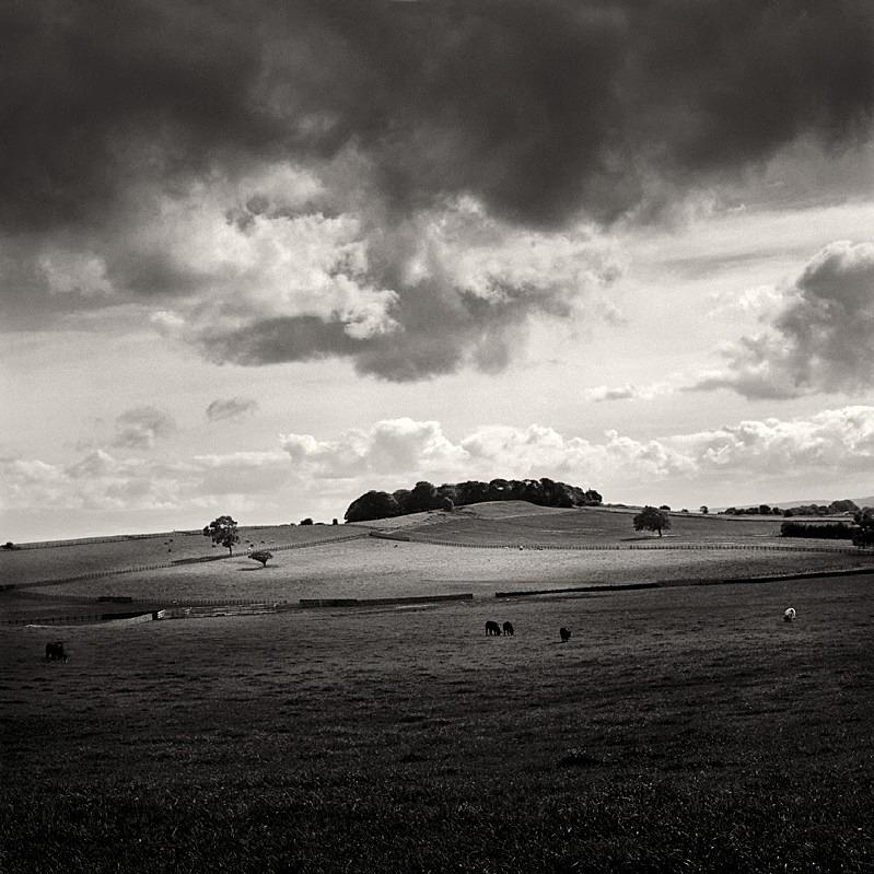Billings Hill