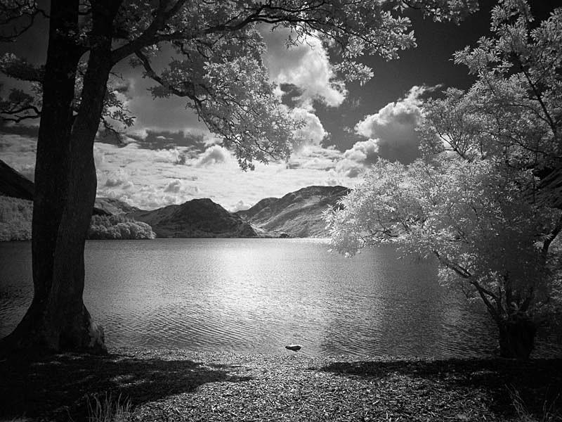 Across Ennerdale Water - Infrared