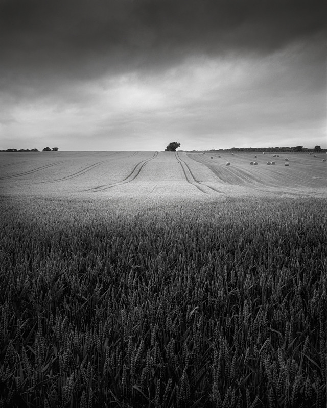 Texture and Crops - Landscapes