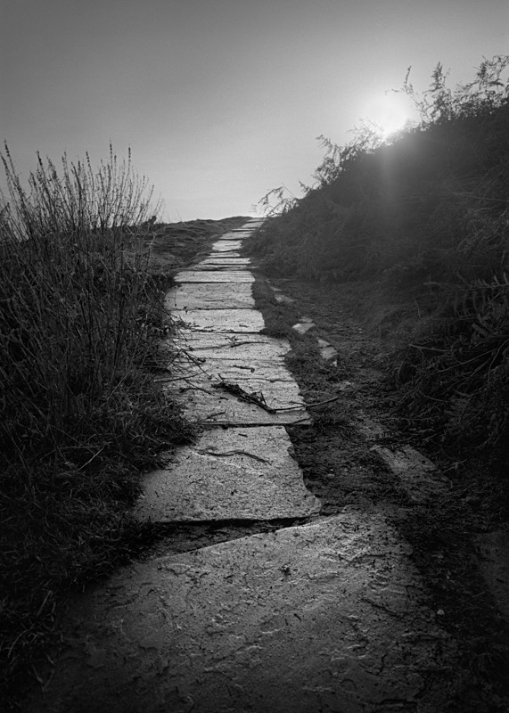 Path to Cow and Calf, Ilkley - Landscapes