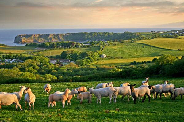 Walescape - United Kingdom