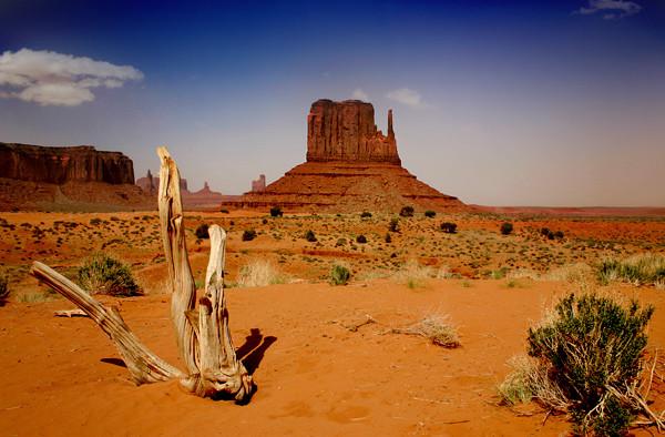 Navajo National Park - United States