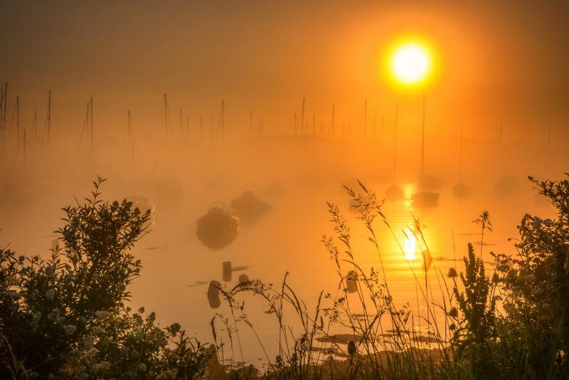 z3068 Summer Mist, Bembridge Harbour - Latest Photos