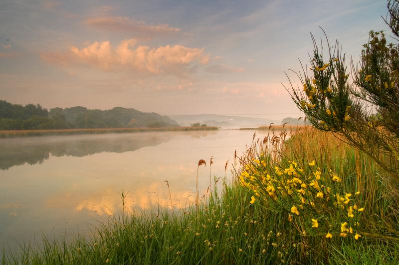 z1961 Misty Morning, Bembridge Lagoons - Seaview to Bembridge, Whitecliff Bay and Brading