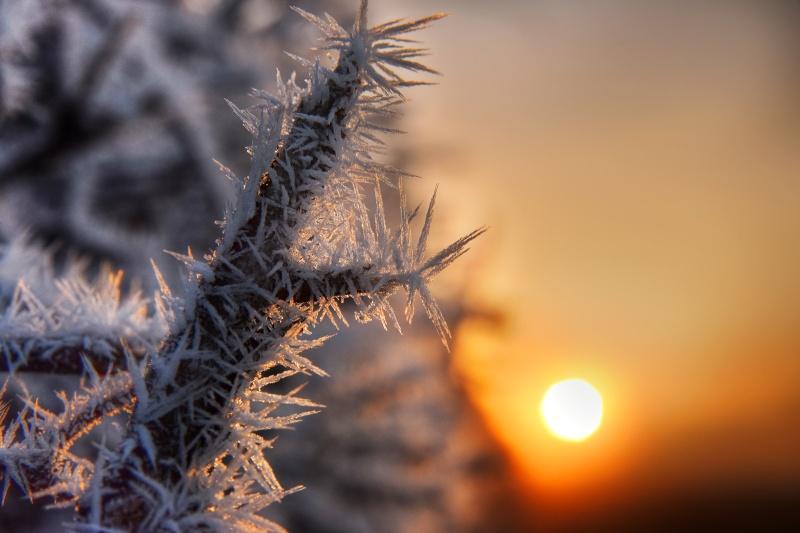 z2584 Frozen Sunrise - The Inner Island inc Newport & Godshill