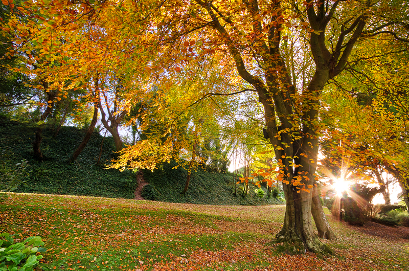 z2148 Autumn Evening, Ventnor - Ventnor to St Catherine's inc Bonchurch & Whitwell