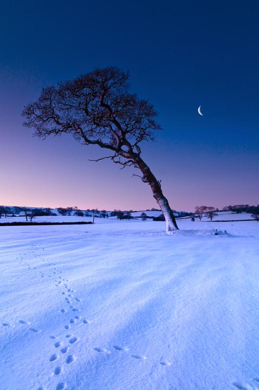 z1743 Snowy Dawn, Ashey - East Cowes to Ryde inc Haventstreet, Ashey