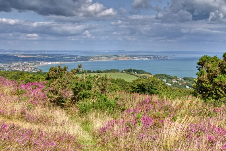 z2250 Sandown View from Ventnor Down - Sandown, Shanklin, Luccombe and Wroxall