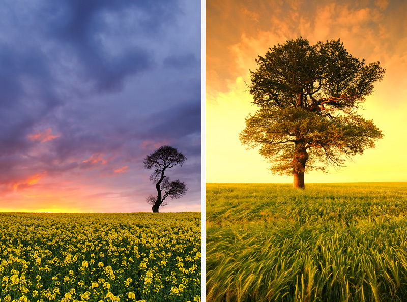 Staffordshire | Landscape Photography