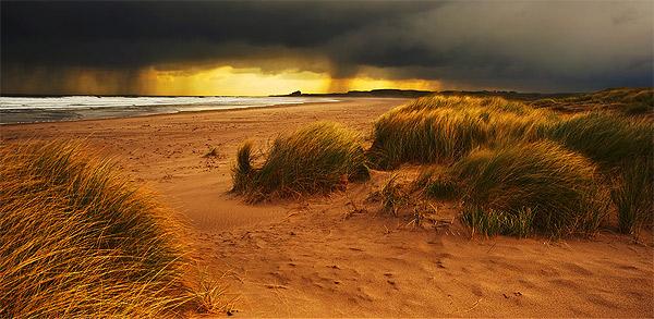 Distant Storms - Landscapes