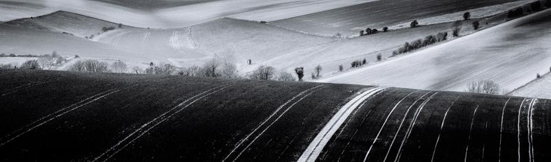 In the Mizzle - Landscape