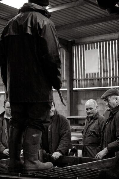 - Yorkshire Folk
