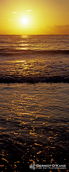 Ocean Sunrise - Panoramic Vertical Images