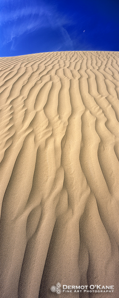 Dune - Panoramic Vertical Images