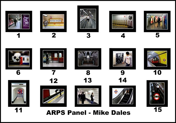 ARPS Panel - ARPS Images