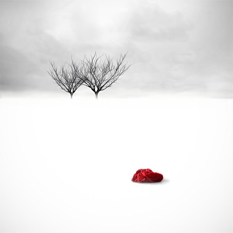The Bundle - Surrealism - Color