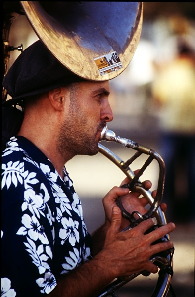 Musician, Barcelona - The Mediterranean and Europe