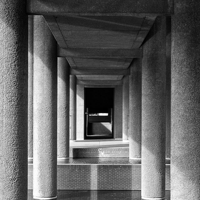 Column Forest - LFI Master Shots