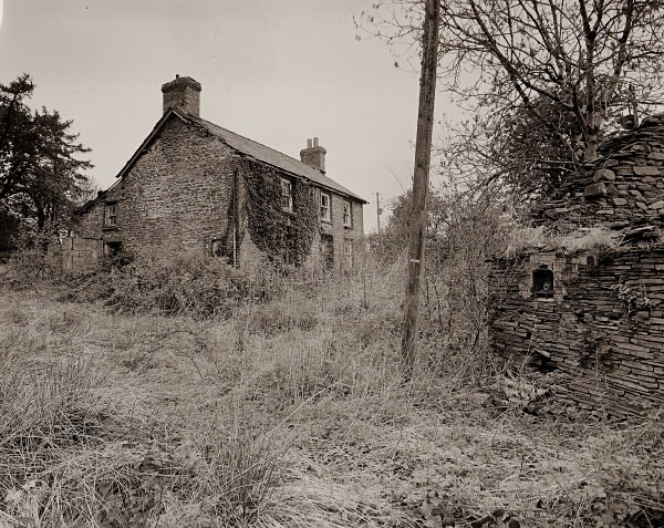 PEN-BRYN-RHYG, Stags Head, Ceredigion 2013 - CEREDIGION FARMHOUSES