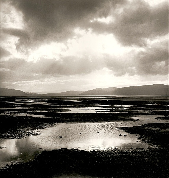 YNYS LAS, Ceredigion 2002 - THE WELSH LANDSCAPE