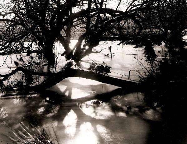 RIVER RHEIDOL: Ox-Bow Lakes on the River Rheidol, Ceredigion 2004 - THE WELSH LANDSCAPE