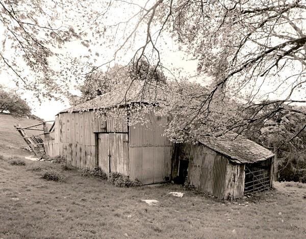 COB/CLOM BUILDING, Llanfihangel-y-Creuddyn, Ceredigion 2011 - CEREDIGION FARMHOUSES