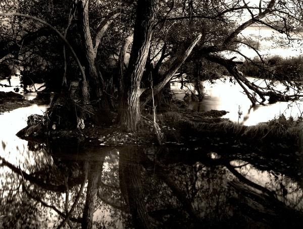 RIVER RHEIDOL: Ox-Bow Lakes on the River Rheidol, Ceredigion 2002 - THE WELSH LANDSCAPE
