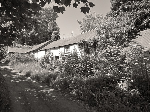 DOLHALOG COTTAGES, Aberaeron, Ceredigion 2013 - CEREDIGION FARMHOUSES
