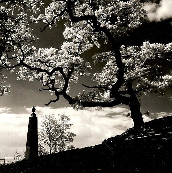 MARIAMNE'S MONUMENT, Hafod, Ceredigion 1991 - THE WELSH LANDSCAPE