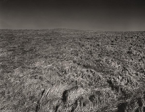 ELAN VALLEY, Rhadayer 1996 - THE WELSH LANDSCAPE