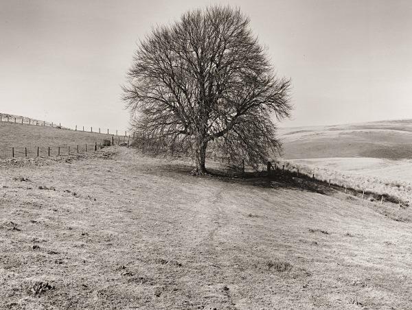 LLUEST ABERCEITHON, Elan Valley, Radnorshire 2015 - RADNORSHIRE (farmhouses)
