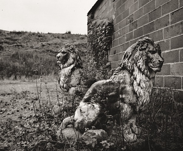 LIONS AT LLANDDEWI-BREFI, Ceredigion 2014 - OTHER WELSH RUINS
