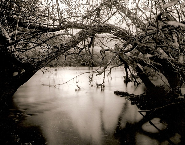 RIVER RHEIDOL: Ox-Bow Lakes on the River Rheidol, Ceredigion 2005 - THE WELSH LANDSCAPE