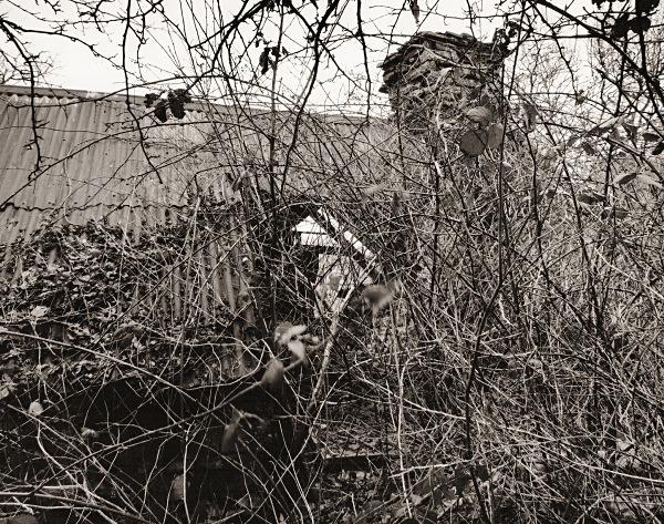 ALLT-DDU, Pont Llanio, Ceredigion 2015 - CEREDIGION FARMHOUSES