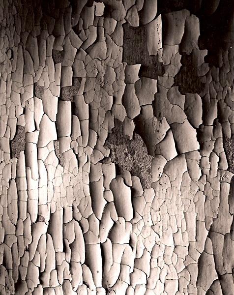 WALL AT DOLGOR'S FARM, Devil's Bridge, Ceredigion 2006 - ABSTRACTIONS