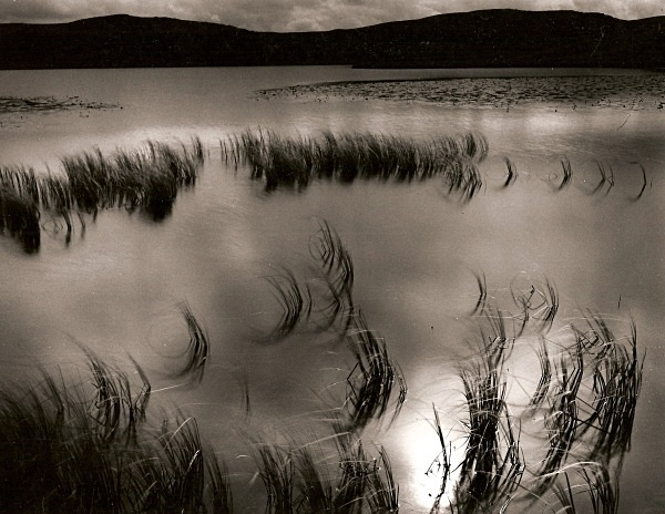 TEIFI POOLS, Ffair-Rhos, Ceredigion 1994 - THE WELSH LANDSCAPE